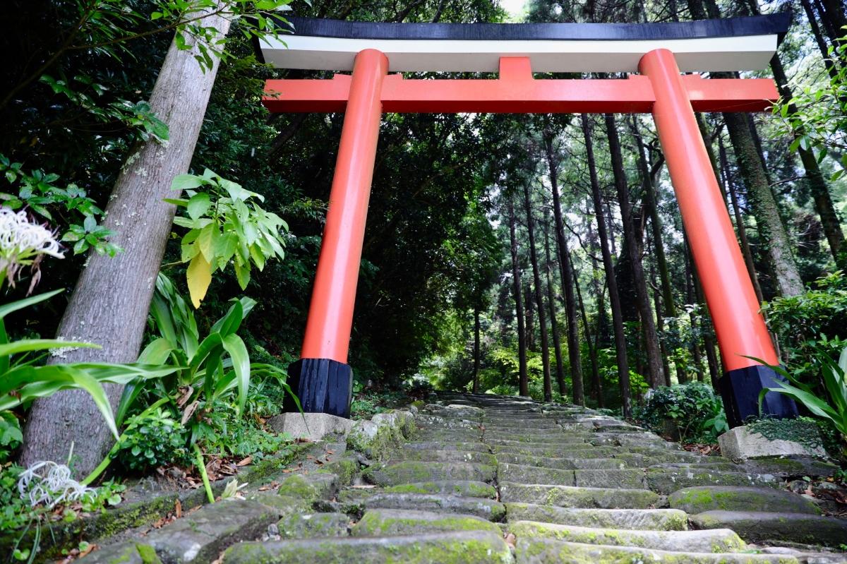 登って登って下る。「鵜戸神宮」はトレッキングだった