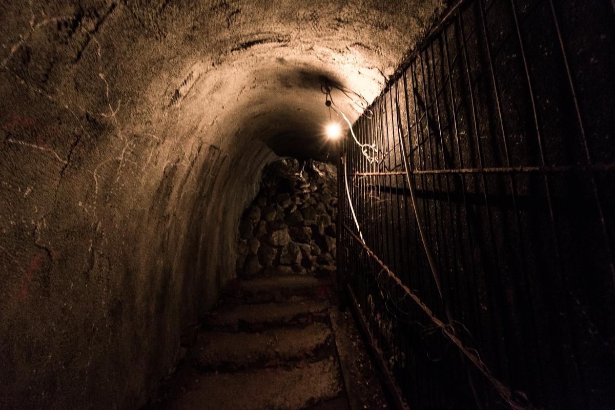 筑波山・ガマランドの闇は、ミレニアル世代のためのもの。