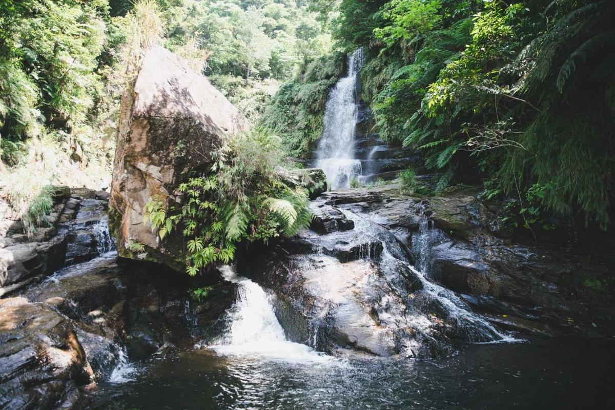 試される島「西表島」でナーラの滝を目指す