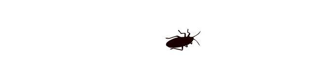 ゴキブリ を 殺す 夢